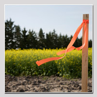 property corners for land surveying
